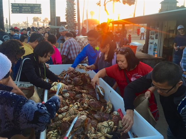 A Yummy Early Morning Of 'Crab Grab' At Newport Beach