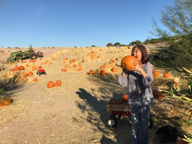 2016-11-pumpkin-patch