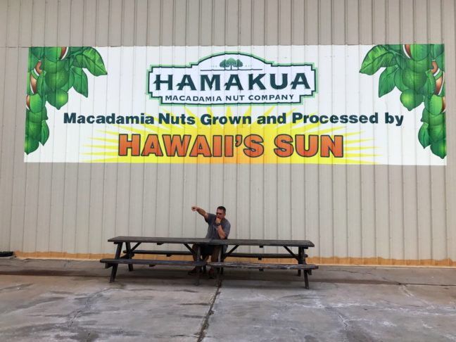 Blaine Giving Orders To The Workers At The Hamakaua Macadamia Farm